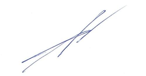 FG electronic signature 2-1